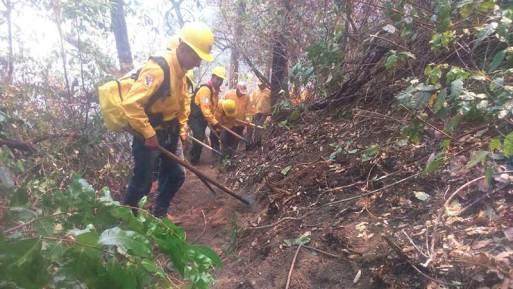 Controlan uno de tres incendios en límites de Edomex y Morelos